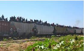 La Bestia the Death Train